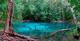 Провинция Krabi.