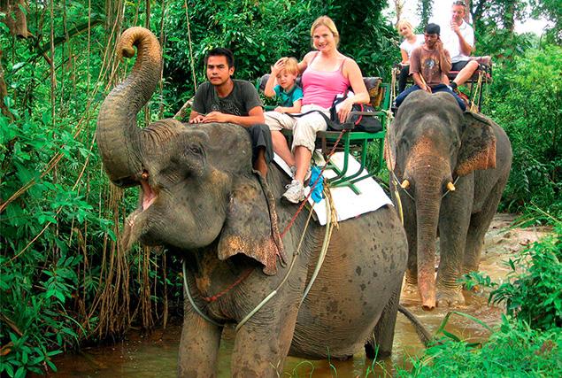 Национальный парк Као Лак. Сафари на слонах.