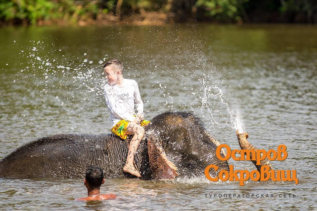 Купания со слонами на Пхукете