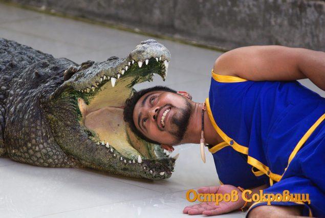 Экзотический Пхукет - шоу крокодилов
